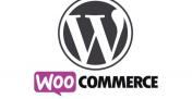 WooCommerce 开发过程中经常用到的核心函数