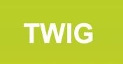 在 WordPress 中使用 Twig 模板,简化 WordPress 主题开发